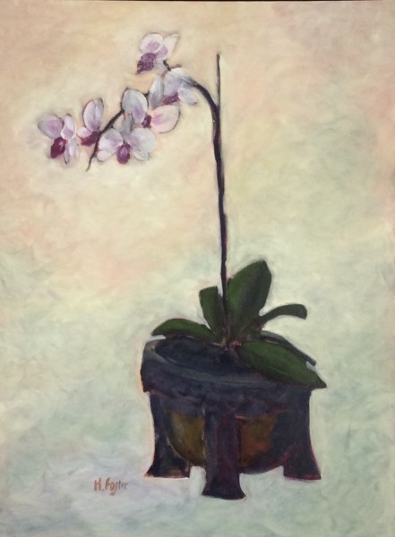 Orchid in Green Pot