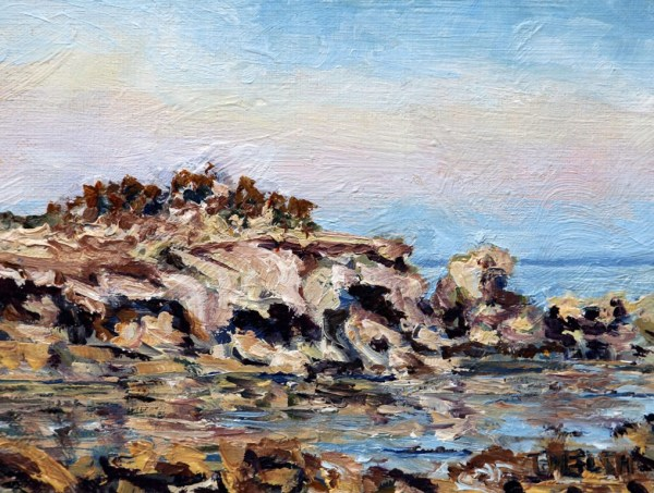 Oyster Bay Sandstone and Sea