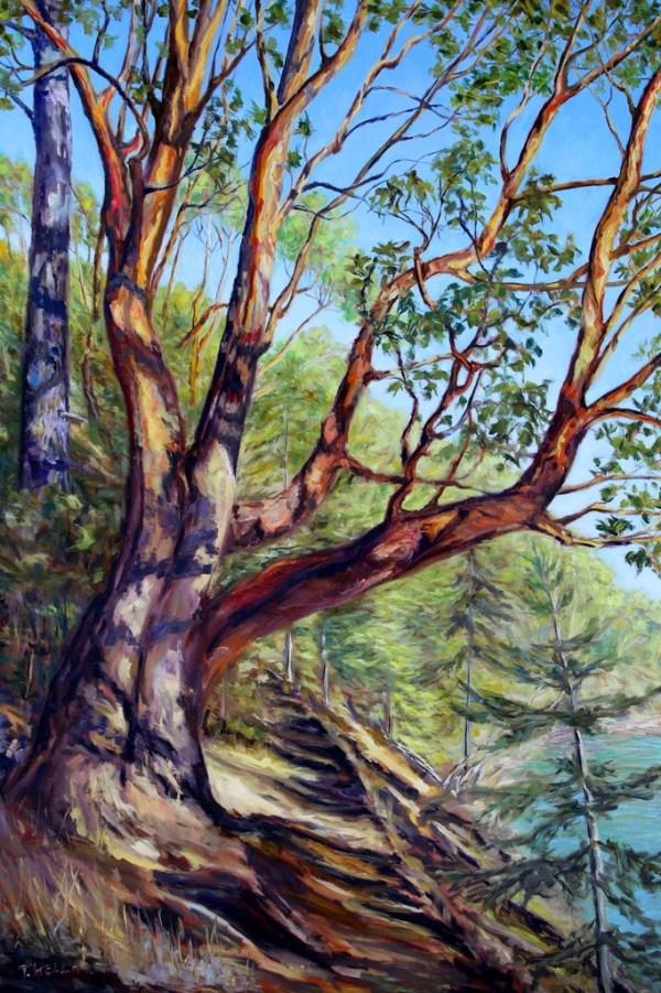 Storytelling Arbutus Tree Bennett Bay Mayne Island BC