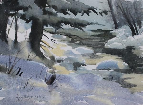 Study of Sunlight on Snow