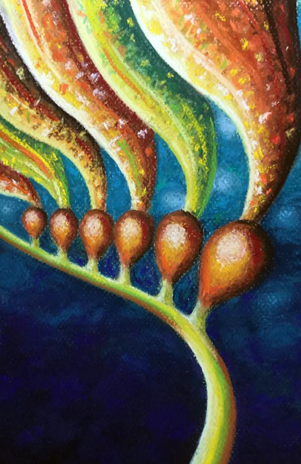 Kelp Chorale 2