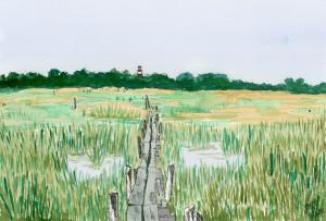 Through_the_marsh_engzv1