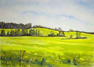 Mustard Fields #1