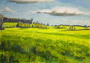 Mustard Fields #2