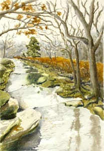 Creek, March, Cloudy Day