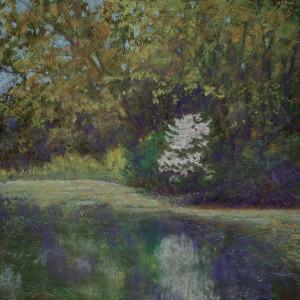 Reflection on spring byae1e