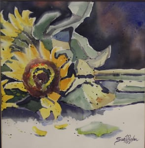 Broken Sunflower