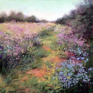 Path Through Coastal Wildflowers