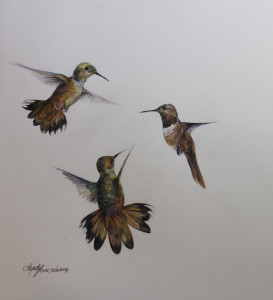 Flight_14x11_colored_pencil_lindy_c_severns_vlwryk