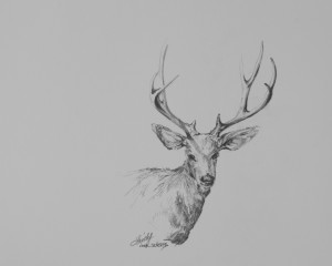 The_regal_one_10x8_graphite_lindy_c_severns_xuzwoh