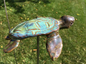 Small sea turtle sst0053