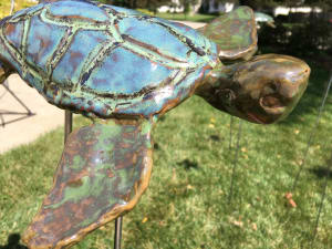 Small sea turtle sst0055
