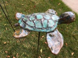 Small Sea Turtle
