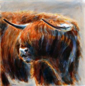 Highland cow small qw6xrs