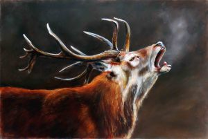 Stag calling small file tfbfe0