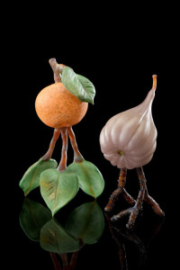Tangerine and Fig on Leaf and Twig Legs
