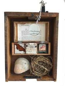 Charleston Box 7