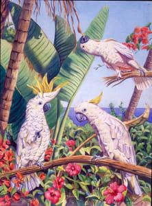 San Diego Cockatoos