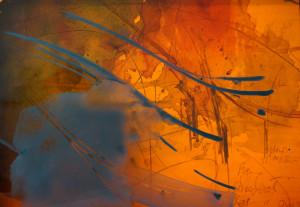 Orange autumn c6nuri
