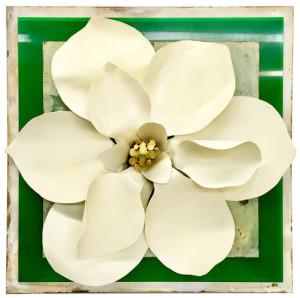 NoLA Magnolia