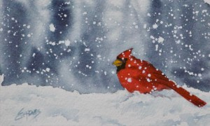 Cardinaldelighthigh yhvzvw