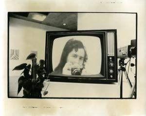 Split Screen, talking Plants, Video Maze, Everson Museum of Art 1975