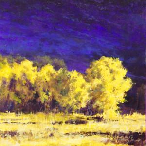 By Cottonwood Creek