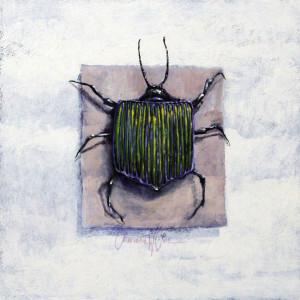 Dream Bug