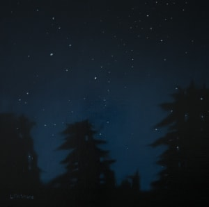 Stars above Samish Island