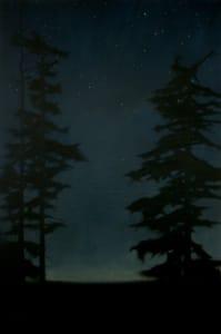 Guardian Trees 3