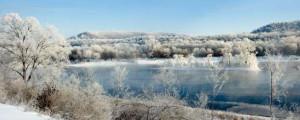 Eagle Island Winter Frost