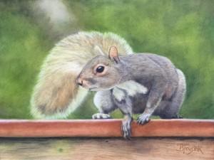 Squirrel! (Phoebe's Addiction)