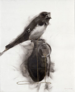 20x16-bird-grenade-string-swallow5lr_jh2aas