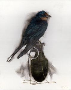 20x16 bird grenade string swallow1lr j1zqxj