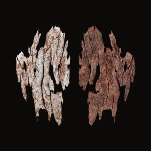 Kimberley Skin - Bungarun Leprosarium