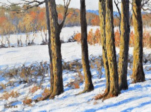 Early winter plyphu