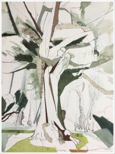 Carmeleucalyptusiiborder apgzdc