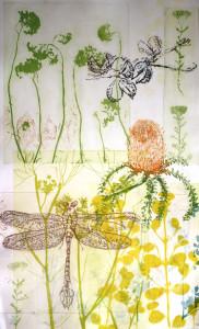 Hakea Banksia & Large Dragonfly 2015