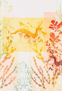 Floating Yellow Weedy Sea Dragon & A Glimpse