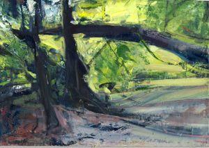 Newman woods oil ectm6t