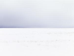 Fairfield Winter II