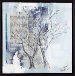 N (tree)