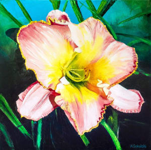 Pink Yellow Day Lily