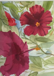Ruby Hibiscus