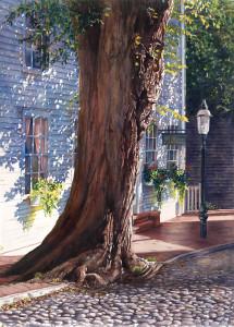 India Street Tree