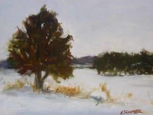 Lone Cedar in Snow