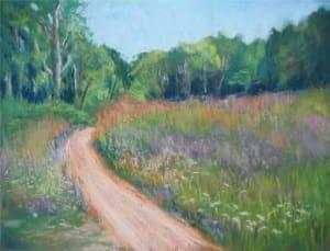 Summer Meadow at Ellison Bay