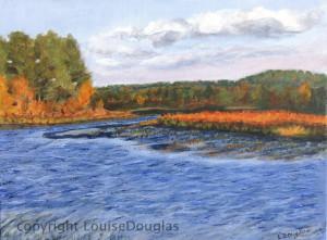 Quaboag River Bog