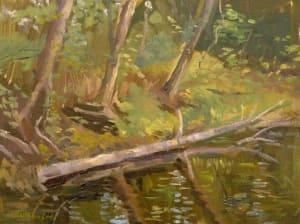Creek along the Natchez Trace