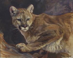 Crouching cougar 8x10 qabxvo